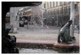 Helsinki_31-7-2009 (17).jpg