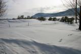 Heavy snows in Jan/Feb 2008