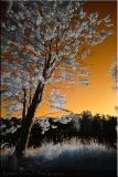 Sunset Infrared shot (July 2006) ...