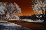 IR Landscape ...