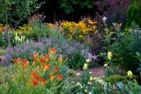 Julie's Garden  ~  July 31