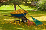Fall Cleanup  ~  September 29