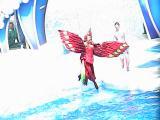 Sea World!!.JPG