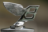 Concours d'élégance automobile Parc de St Cloud 2008