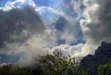 Altocumuli Castellani (Wolkenbild)