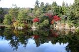 A Garden, Kyoto, Japan