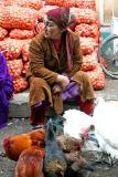 Selling live chicken on the market, Chakrysab, Uzbekistan