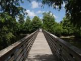 Green Cay wetlands boardwalk