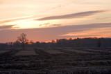 Sunrise, Field