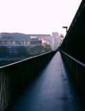 Thames Footbridge Morning