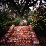 Mepkin Abbey Garden #2