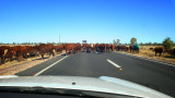 Outback Highway Obstacle