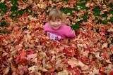 Cailynn Oct 8 leaves 0832.jpg
