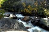 creek into Bucks lake.jpg