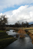 creek near butte college.jpg