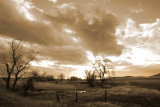 sepia on a cloudy day.jpg
