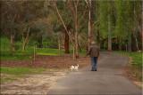 Walking the dog - 2