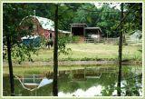 Barn in a reflective mood.