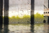 Shipyards Dry Dock Water Level Oct 2, 2012 at 1500