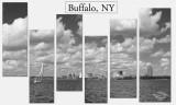 Buffalo Collage