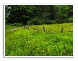 Spring-At-Knox-Farm-54