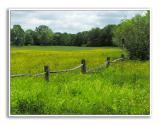 Spring-At-Knox-Farm-58