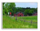 Spring-At-Knox-Farm-70