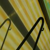 November 11  2008:  Line and Shadow