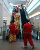 A Lion On An Escalator