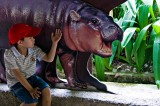 Hippo & YH