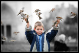 Bird Master