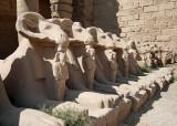 Karnak/sphinxes
