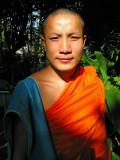 Monk Nut