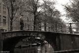 Holland 2009-0212sepia.jpg