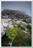 Paisaje - Landscape