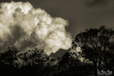High Contrast Clouds 1