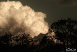 High Contrast Clouds 2