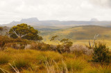 Cradle Mountain and Mt Ossa