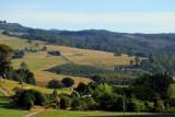 Farmland, Camena