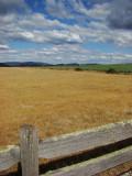 Farmland, Kindred