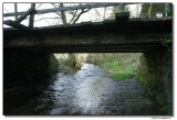 bridge-7104-sm.JPG