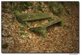 bench-7290-sm.JPG