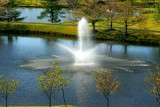 Meadowlark Botanical Gardens 2009