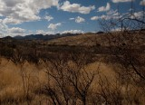 Harley Davidson Ride from Tucson to Bisbee, AZ