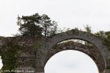 NDLR : Des vestiges qui ne dureront pas lontemps avec des arbres poussant dessus