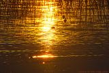 Sunset - Coucher de soleil - Lac de Saint-Point