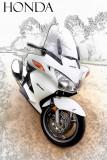 IMG_6158 Honda 1.jpg