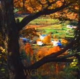 Autumn Vermont IV