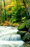Smokey Mountains Creek
