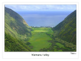 waimanu valley (looking out)
